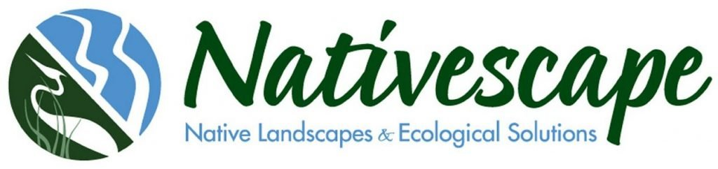 Nativescape_logo